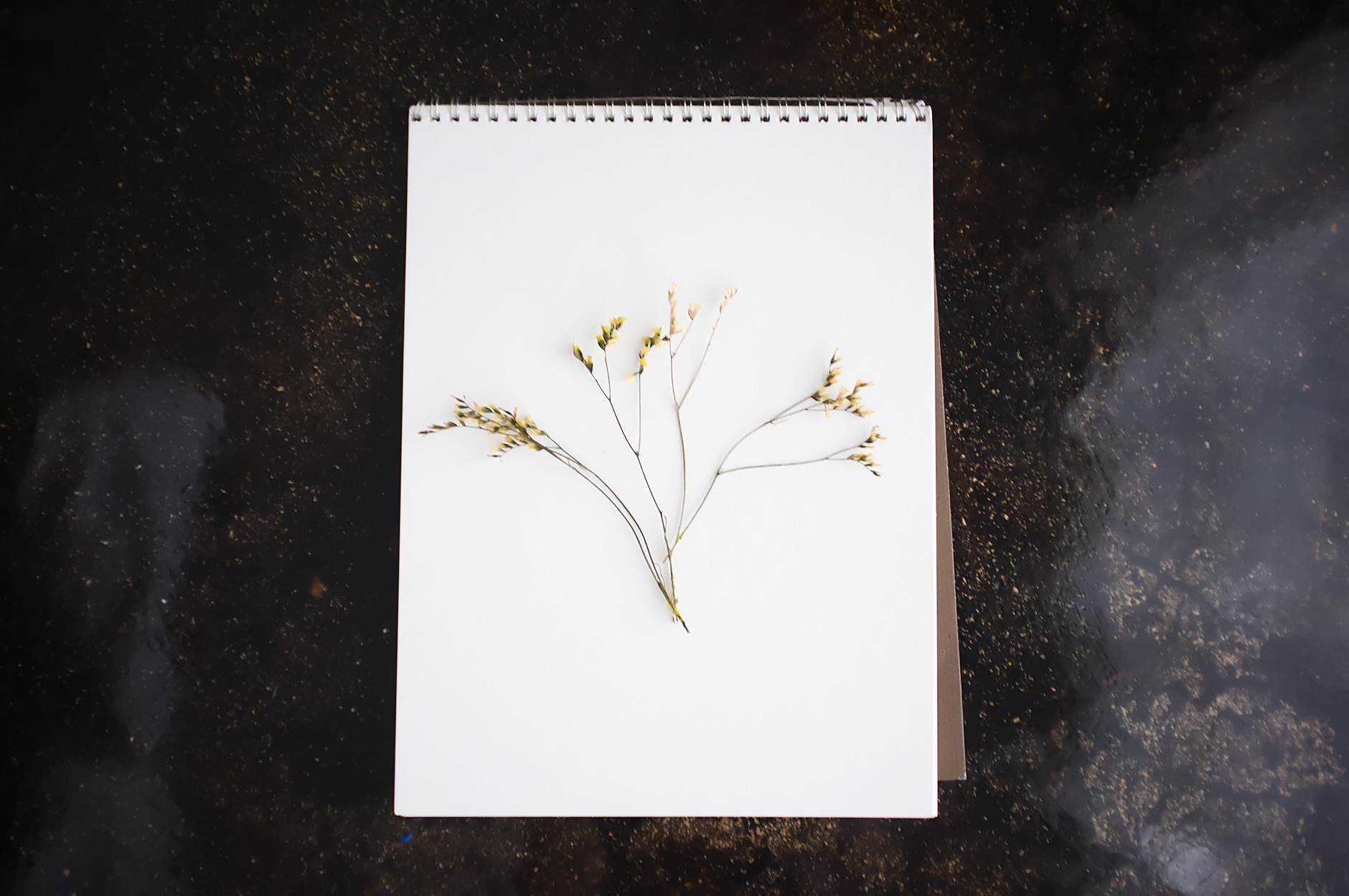 Pressed Flower Arrangement