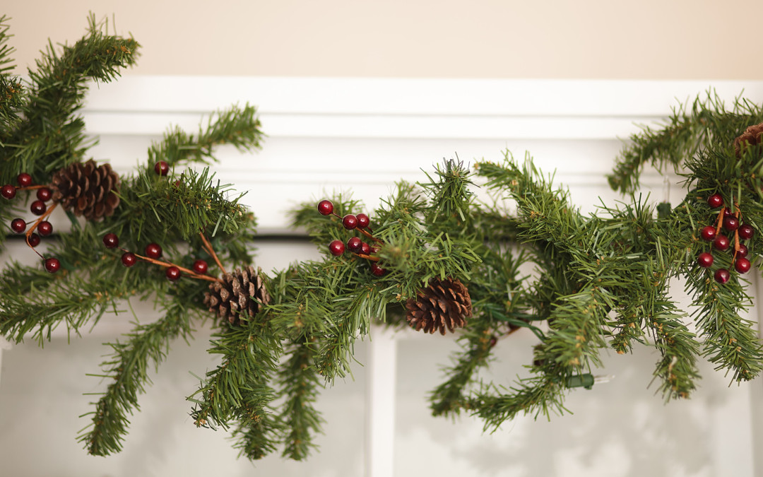 Spruce Up Plain Garland
